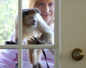 Helping Hands _ Monkey Door